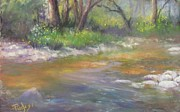 Brandywine Originals - Stony Creek by Bill Puglisi