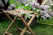 Lilac Photography Posters - stool and Lilacs Poster by Cheryl Cencich