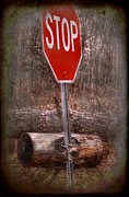 Stop Sign Posters - STOP firewood transport Poster by The Stone Age