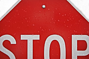 Stop Sign Photo Prints - Stop Print by Jarrod Erbe