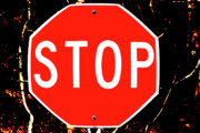 Stop Sign Art - Stop by Karol  Livote