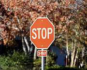 Traffic Control Photo Posters - Stop Poster by Malania Hammer