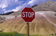 Instructions Posters - Stop Sign in South Dakota Badlands Poster by Will & Deni McIntyre