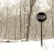 Stop Snowing Print by John Stephens