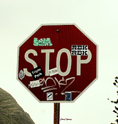 Stop Sign Photo Prints - Stop Taggin Print by Cheryl Young