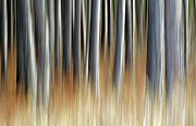 Abstract Impressionism Photo Prints - Stories to Tell Print by Bill Morgenstern