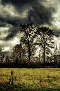 Skagit Digital Art - Storm brewing by DMSprouse Art