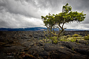 Hawai Prints - Storm Moving In Print by Christopher Holmes
