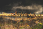 Central Park Digital Art Prints - Storm over the park Print by Ariane Moshayedi