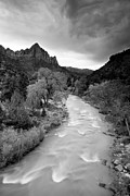 Zion National Park Posters - Storm Over the Watchman Poster by Adam Pender