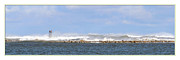 Panoramic Digital Art Originals - Storm Waves Off Scituate  by DN Twigg