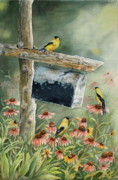 Goldfinch Framed Prints - Stormbirds Framed Print by Patricia Pushaw
