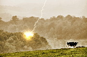 Country Scenes Prints - Stormy Cow Print by Emily Stauring
