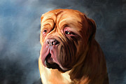 Animals Posters - Stormy Dogue Poster by Michelle Wrighton