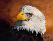 Bald Eagle Painting Framed Prints - Stormy Eagle Framed Print by Brent Ander