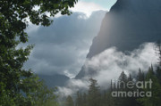 West Glacier Prints - Stormy Morning in Glacier Print by Sandra Bronstein