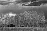 Sandra Bronstein - Stormy Morning in the Grand Tetons