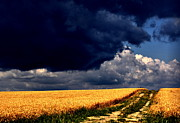 Farm Scenes Photos - Stormy Path by Emily Stauring