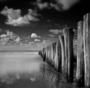 Black And White Photography Photos - Stormy Weather by Christiane Michaud