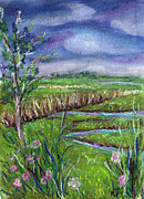 Berkeley Originals - Stormy wetlands by Clara Sue Beym