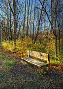 Empty Bench Prints - Storybook Bench Print by Pamela Baker