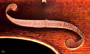 The Violin - Stradivarius Label by Endre Balogh