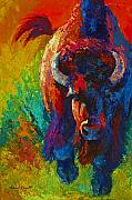 Bison Prints - Straight Forward Introduction - Bison Print by Marion Rose