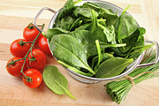 Spinach Posters - Strainer with spinach leaves and tomatoes Poster by Sandra Cunningham