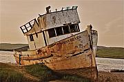 Beached Photos - Stranded boat in golden light by Alberta Brown Buller