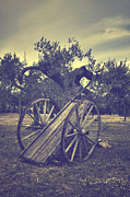 Straw Metal Prints - Straw Cart Metal Print by Joana Kruse