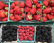 Blackberry Photo Posters - Strawberries Blackberries Rasberries - 5D17809 Poster by Wingsdomain Art and Photography