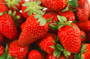 Juicy Strawberries Metal Prints - Strawberries Metal Print by Gaspar Avila