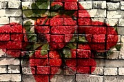 Strawberries On Bricks Print by Barbara Griffin