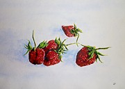 Strawberries Paintings - Strawberries  by Zaira Dzhaubaeva