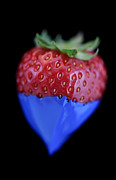 Drupe Framed Prints - Strawberry blue Framed Print by Al Hurley