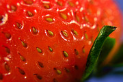 Ahmed Moustafa - Strawberry Close up