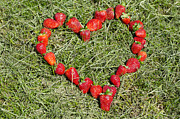 Heart Healthy Photo Posters - Strawberry heart Poster by Mats Silvan