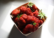 Four Strawberries Prints - Strawberry Season Print by Anne Babineau