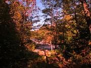 John Malone - Stream with Rapids