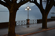 Night Lamp Framed Prints - Street lamp Framed Print by Mats Silvan