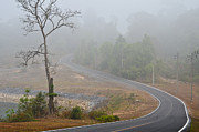 Foggy Street Scene Acrylic Prints - Stretch of road in the valley. Acrylic Print by Chatchai Somwat