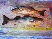 Large Mouth Prints - Striped Bass Keepers Print by Wingsdomain Art and Photography