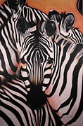 Zebra Pastels - Stripes by Annie Seddon