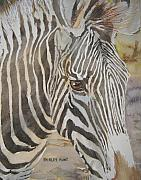 Zoological Prints - Stripes Print by Shirley Braithwaite Hunt