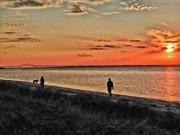 Stroll On The Beach Print by Linda Pulvermacher