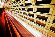Metro Photo Metal Prints - Stronger in the Contrast Metal Print by Mitch Cat