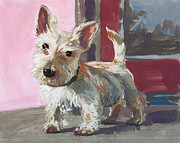 Scottish Terrier Puppy Prints - Stuart the Scotty Print by William Noonan