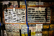 License Plates Prints - Studebakers on Auction Print by Toni Hopper