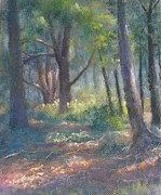 Dappled Light Pastels Posters - Study for Woodland Interior Poster by Bill Puglisi