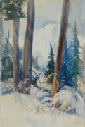 North Cascades Paintings - Study Mount Baker From Watson Anderson Lakes Road by Sukey Jacobsen